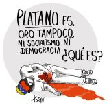 (31) Platano_XTian
